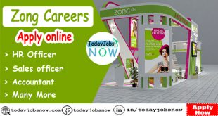 Zong Careers