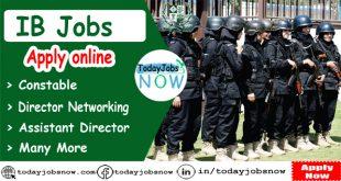 ib jobs