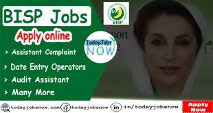 Bisp Jobs