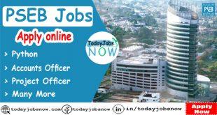 PSEB Jobs