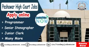 Peshwar High Court Jobs