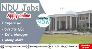 NDU Jobs