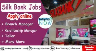 Silk Bank Jobs