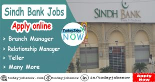 Sindh Bank jobs