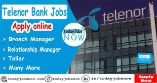 Telenor Bank Jobs